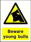 Beware young bulls sign.