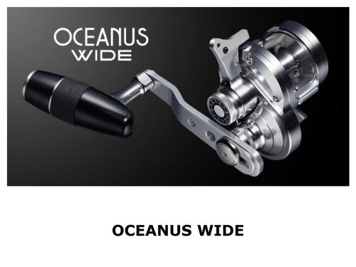 Evergreen Oceanus Wide Right