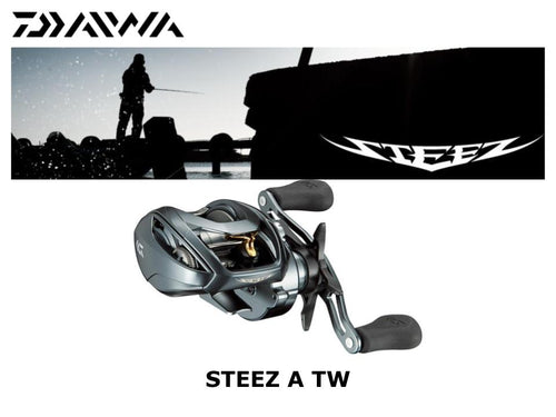 Daiwa 17 Steez A TW 1016-CC Right