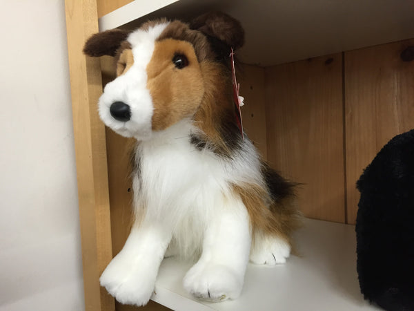 Lassie the Collie Dog