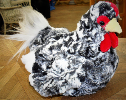 Pepper the Black Hen