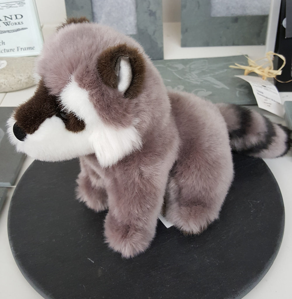 Ranger the Raccoon