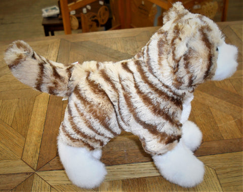 Sadie the Tiger Striped Cat