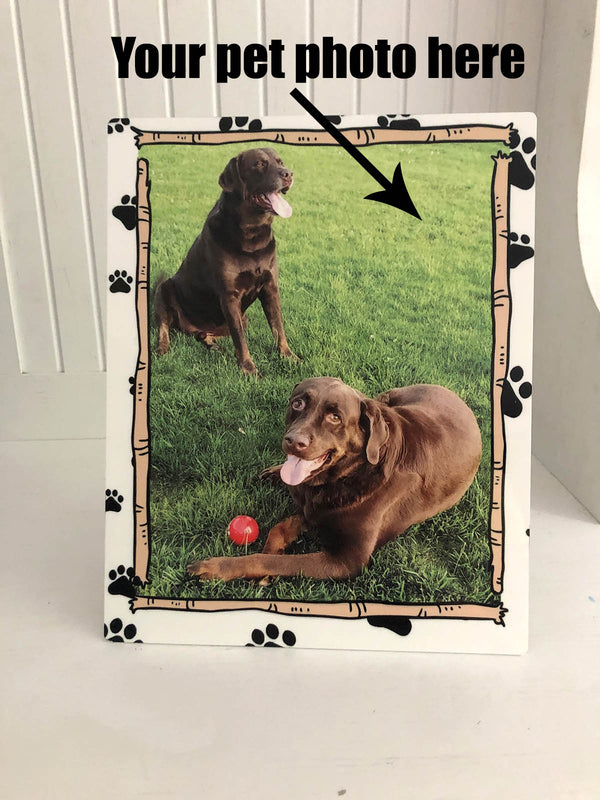 Pet Photo Metal Print
