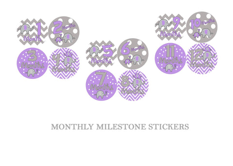 Elephants Monthly Milestone Sticker Set
