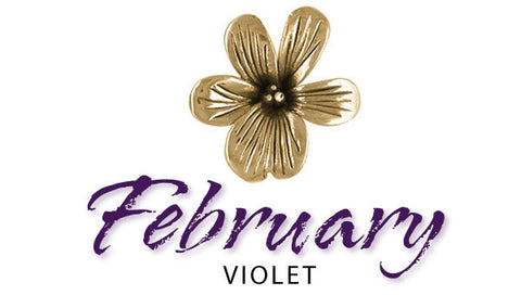 february birth flower jewelry violet
