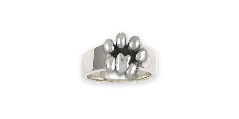 Lion Paw Charms Lion Paw Ring Sterling Silver Lion Jewelry Lion Paw jewelry