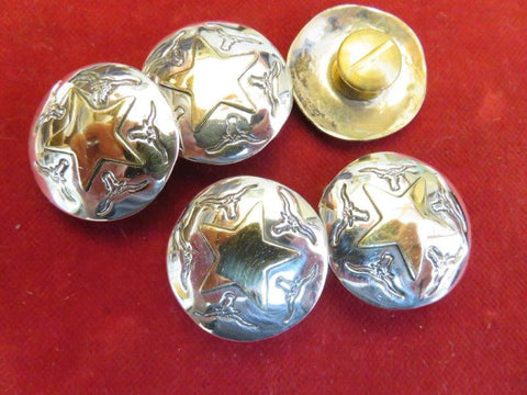"Conchos: Set of 5 Sterling 1"" with Brass Star and Steer motif"