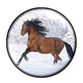 Diva Dot Snap Button, Horse