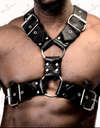 Cross Front Harness