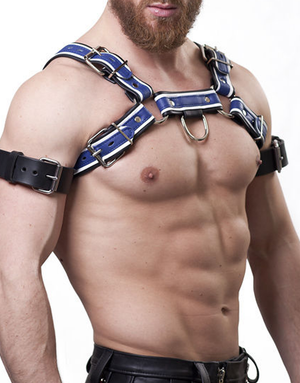 Harness H (black/blue)