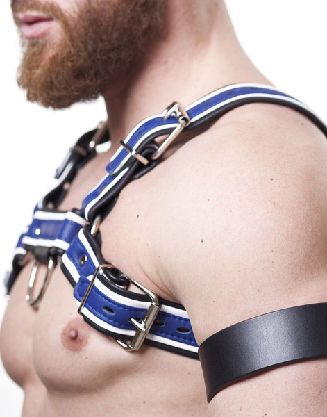 Harness H (blue)