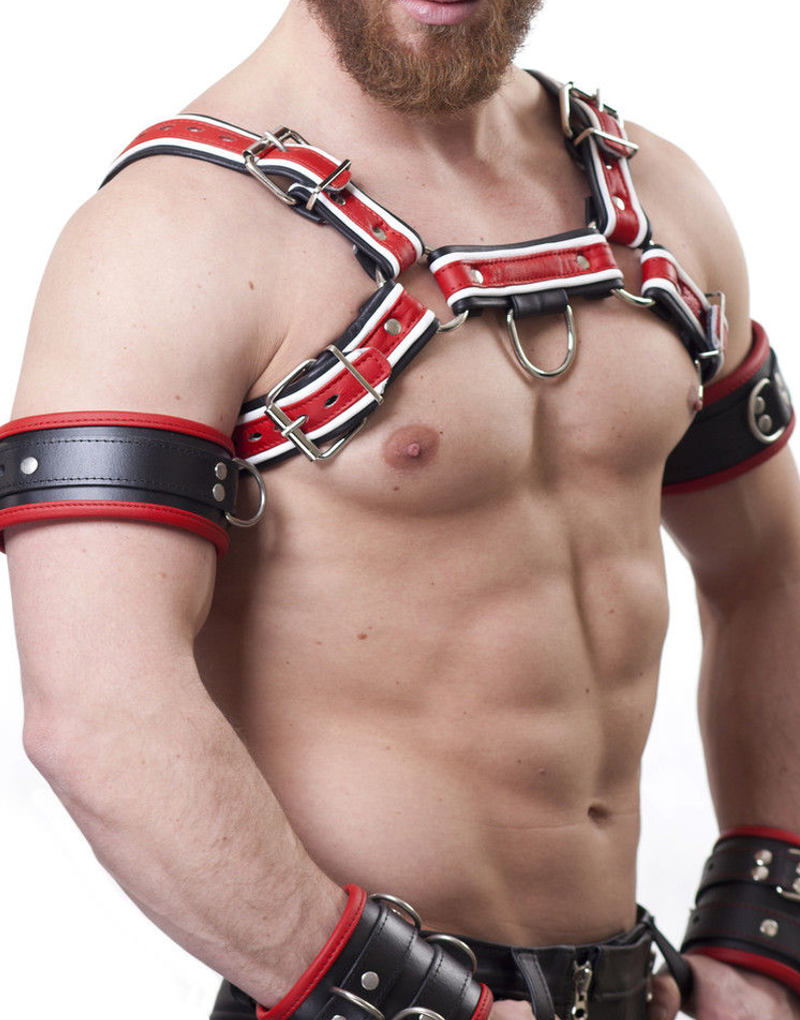 Harness H(red)