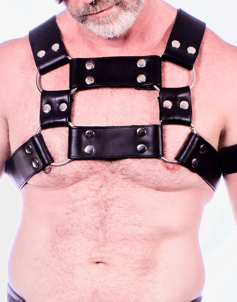 Heavy Duty Harness