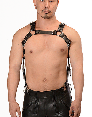 H Harness Set