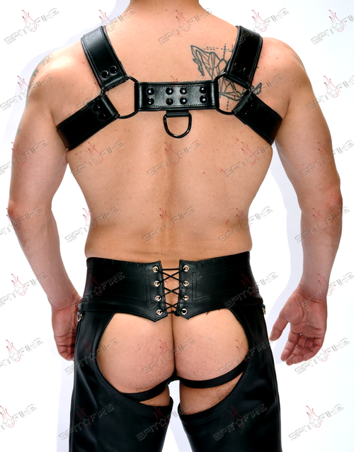 Warrior Harness