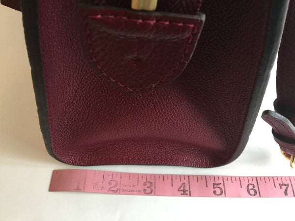 Louis Vuitton Pont-Neuf MM Raisin