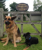 Carved Cedar Beware of Guard Dog Warning Sign  (P12) - The Carving Company