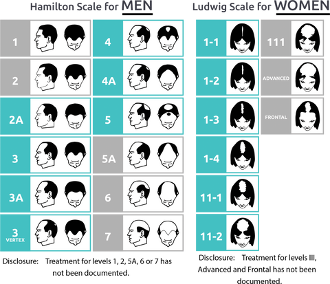 Hair loss classification chart