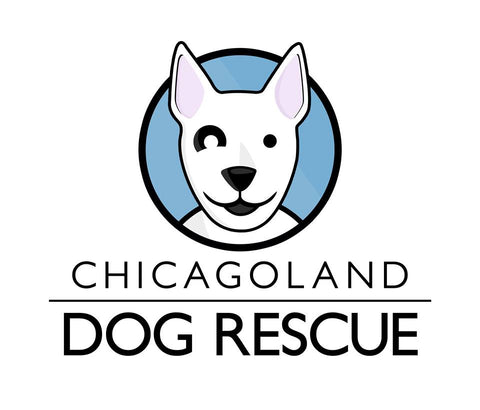 Chicagoland Dog Rescue + Art Fuzd Fundraiser