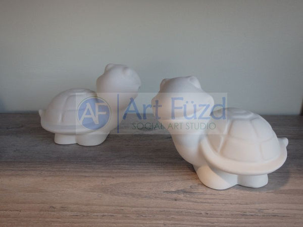 Turtle Party Animal ~ 3.5 in. high