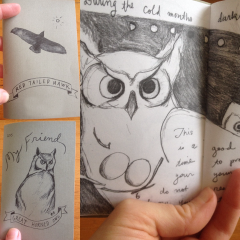Hawk and Owl zine by Arati Ursus