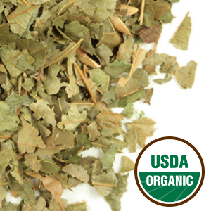 Organic Witch Hazel Leaf