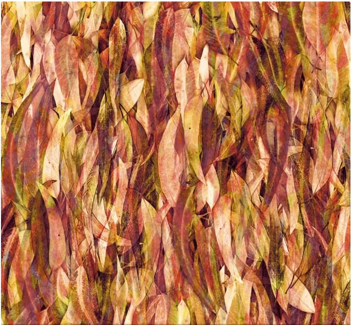 digital fabrics australia, print-to-order fabrics, Polyester and Natural fabrics: Linen, cotton, chiffon, canvas, lycra and more, Designer digitally printed fabrics, AfterPay & Free Standard Shipping Australia Wide, digital fabric designs, custom fabric printing, digital fabrics online, custom designs, custom prints, mcaussieboutique.com.au