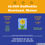 10,000 Daffodils Howland, Maine- (Use Drop down box to choose amounts.)