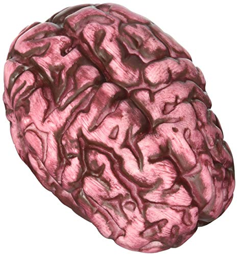 fake brain toy