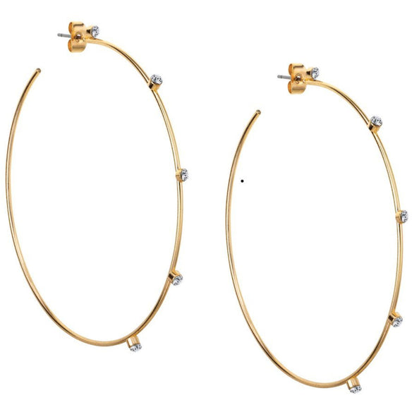18k Yellow Gold With Swarovski Crystal Hoop Earrings - The Posh Shop