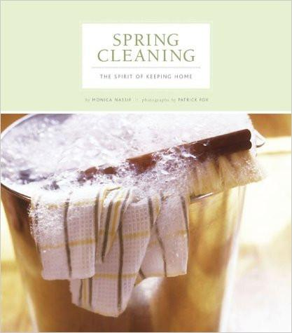 Spring Cleaning Book