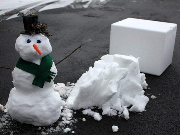 Snowman In A Box Shipped Overnight To Your Door Ship