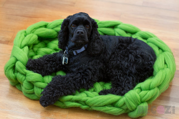 dog bed chunky knit merino wool becozi