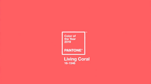 pantone color of the year living coral becozi