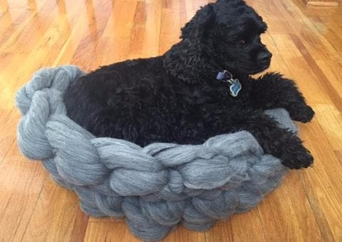 Merino Wool DIY Hand Knitting Kit, Dog Bed