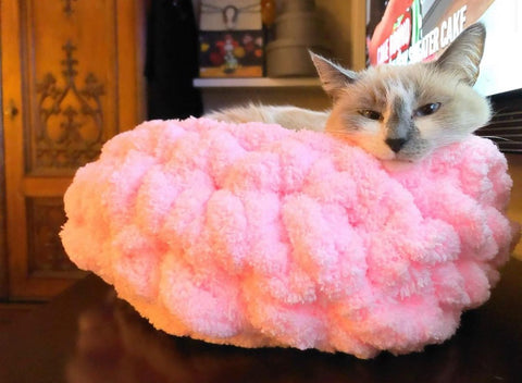 Cat bed, Jumbo Chenille Yarn