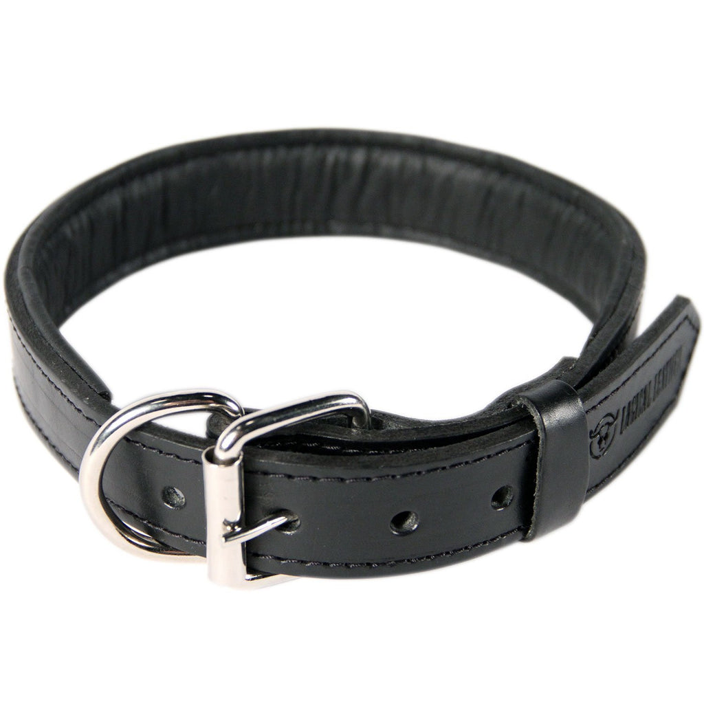 Padded Leather Dog Collar - Black