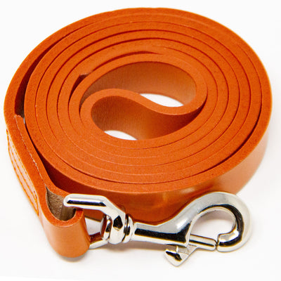 Leather Dog Training Leash