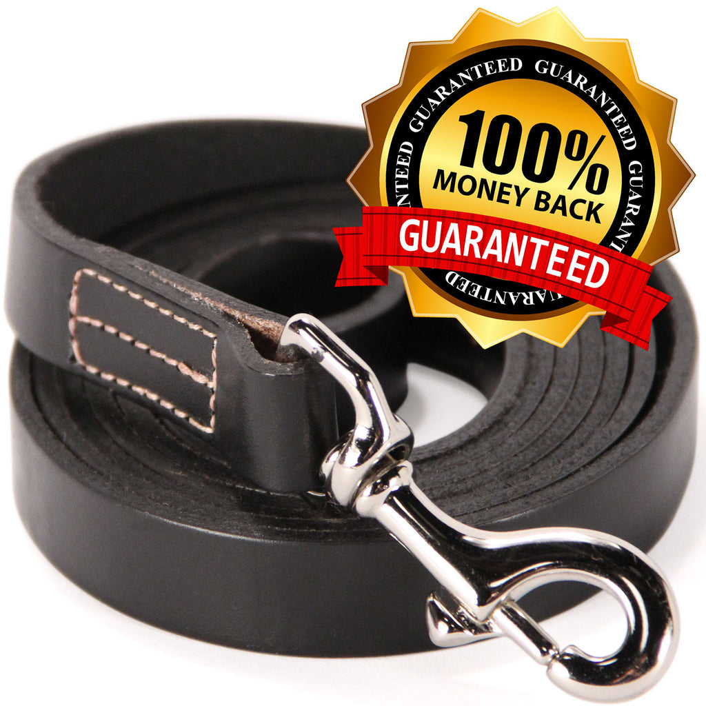6 Foot Leather Dog Training Leash - Black