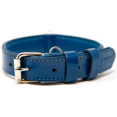 Supreme Padded Leather Dog Collar