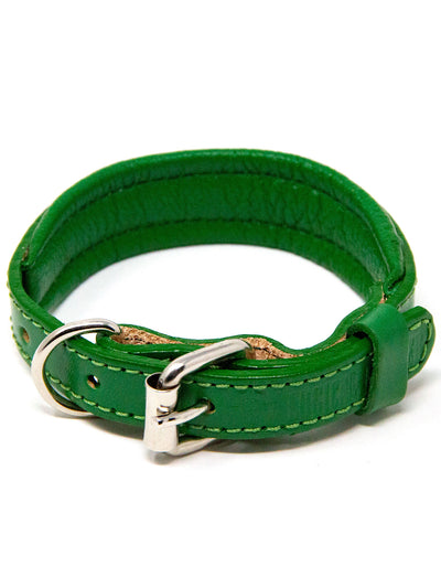 Padded Genuine Leather Dog Collar