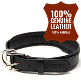 Deluxe Padded Genuine Full Grain Leather Collar
