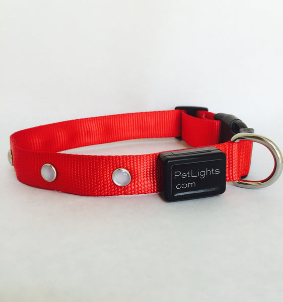 Lighted Pet Collar with Red LED Lights