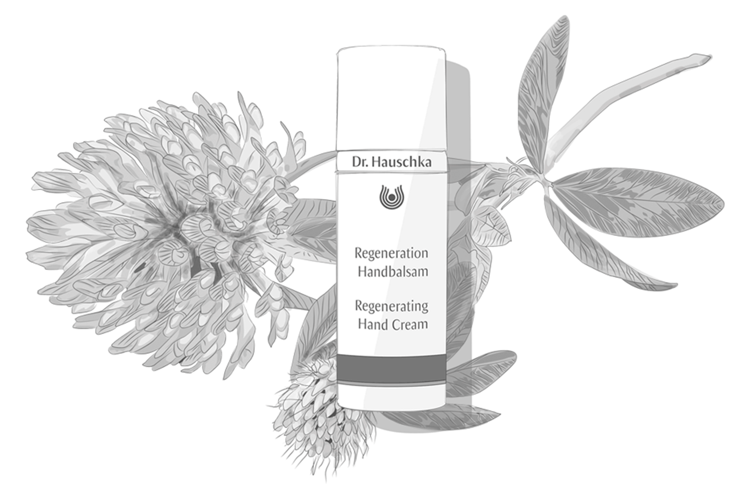 Dr. Hauschka Launches Regenerating Hand Cream