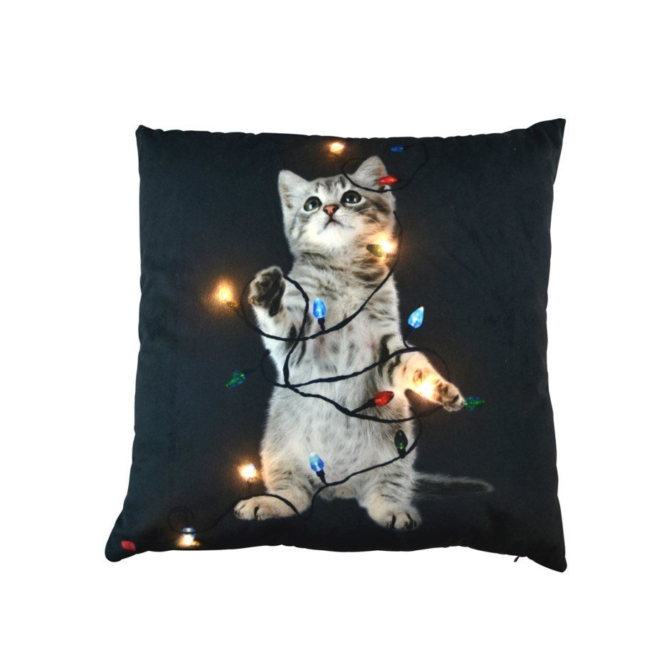 Cushion Cat LED