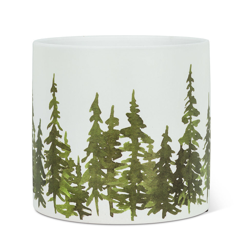 "Large Evergreen Planter- 6.5""D"