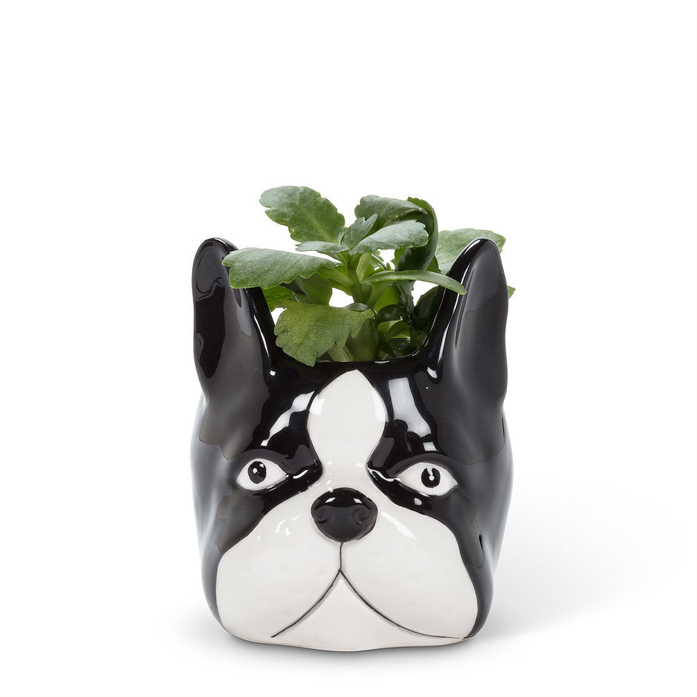 "Small Dog Head Planter 4""H"
