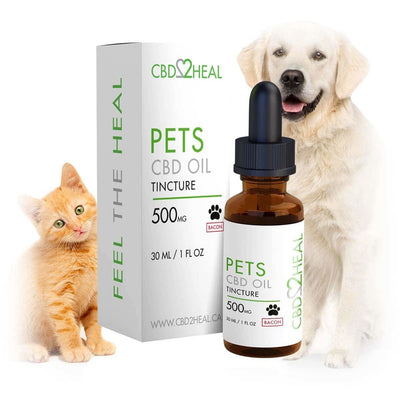 CBD2HEAL Pets CBD Oil Tincture 500mg – Bacon Flavoured