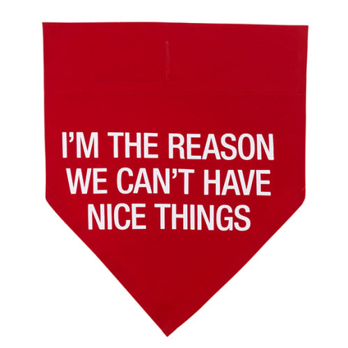 Can't Have Nice Things Bandana L/XL